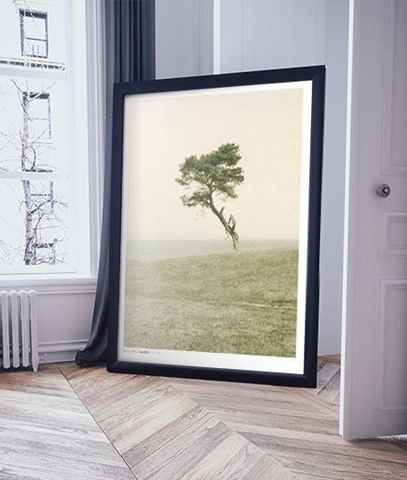 Printa bilder i större storlekar